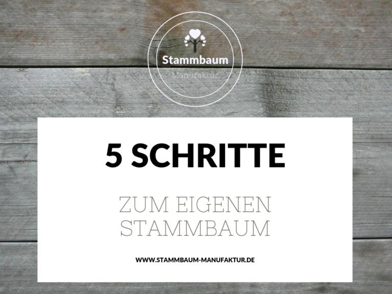 Stammbaum erstellen in 5 einfachen Schritten
