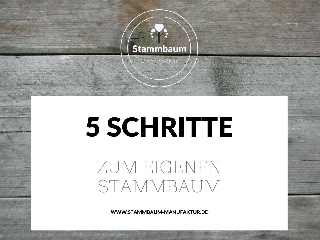 Stammbaum erstellen - in 5 einfachen Schritten
